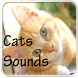 Cats Sounds by Playstore Sounds Inc