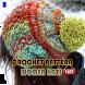 Crochet Pattern Women Hats by newerica