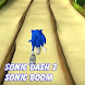 Guide for Sonic Dash 2: Sonic Boom