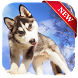 Husky Puppies Wallpaper by World Wide Wallpaper