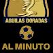 Rionegro Águilas Doradas Noticias - Colombia by FutbolApps.net