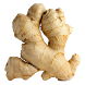 Health Benefits of Ginger by Abi Apps