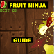 New Guide for Fruit Ninja by megan