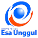 Universitas Esa Unggul by Disco Inc.