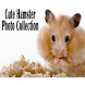 Cute Hamster Collection