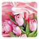 Pink Roses Live Wallpaper by Wallpaper qHD
