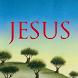 Jesus by Verlag Herder GmbH