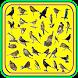 Novo Canto Dos Pássaros Brasil by ayyasy
