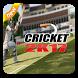 Pro Cricket Sport Tips