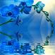 Blue Orchid Live Wallpaper by Daksh Apps