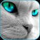 Handsome Cat HD Live Wallpaper by Thanush Larsen