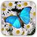 Butterfly Live Wallpaper Free by alphaism