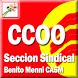 Sección S. CCOO Benito Menni by Seccion Sindical CCOO Benito Menni CASM