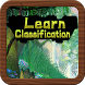 Learn Classification