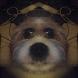 Symmetrical Selfie by Padio Oy/Jouni Lappi