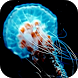 Jellyfish 3D Video LWP by ComfyDj