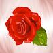 Роза 25 (Доставка цветов) by mobi-q