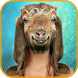 Animal Face Changer Maker by Dreams Network
