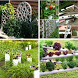 Hydroponick Plant Ideas