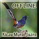 Kicau Murai Batu Offline by Big Emo Labs