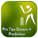 Pro Tips Dream11 Prediction by prank.studioo.ps