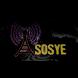 ASOSYE RADIO by Nobex Partners Program