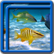 Ocean Fish Live Wallpapers by Blue Live Wallpapers