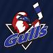 Long Island Gulls by iTeamz LLC