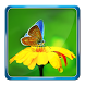 Photo Blur Background & DSLR Camera Effects Maker by Pro Data Doctor Pvt. Ltd.