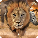 Savanna Race by Darie Productions
