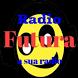 Radio Web Futura by Soluçoes Radio Online