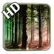 HD Forest Live Wallpaper by Live Wallpaper Background