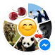 Sticker Bliss for Messenger by Sticker Paradise