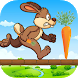 Bunny run 2 by NewTechApps