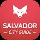 Salvador da Bahia Travel Guide by tripwolf