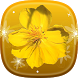 Mai Flower Live Wallpaper by Happy live wallpapers