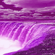 Purple Fall Live Wallpaper by Daksh Apps