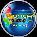 RADIO SONAR FM (OFICIAL) by Servicios Profesionales Bolivia