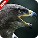 Eagle Wallpaper by ImperialApps