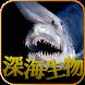 深海生物 闇に潜む謎の生物達・・・ by eye-putti