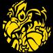 Black Eagles app by Ward de Laat