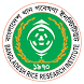 Rice Knowledge Bank by National Apps Bangladesh