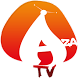 Mobile TV - Aza by novoSense Intelligence