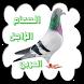 الحمام الزاجل العربي by APK&APPS