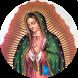 Nuestra Señora de Guadalupe by DBox