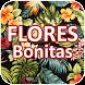 Flores Bonitas by 1000apps