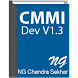 CMMI Development by Techno Global Solutions