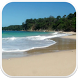 Beach Video Live Wallpaper 3D by Lewiski