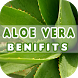 Aloe Vera Benefits by Health Info