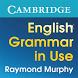 English Grammar in Use by Cambridge Learning (Cambridge University Press)